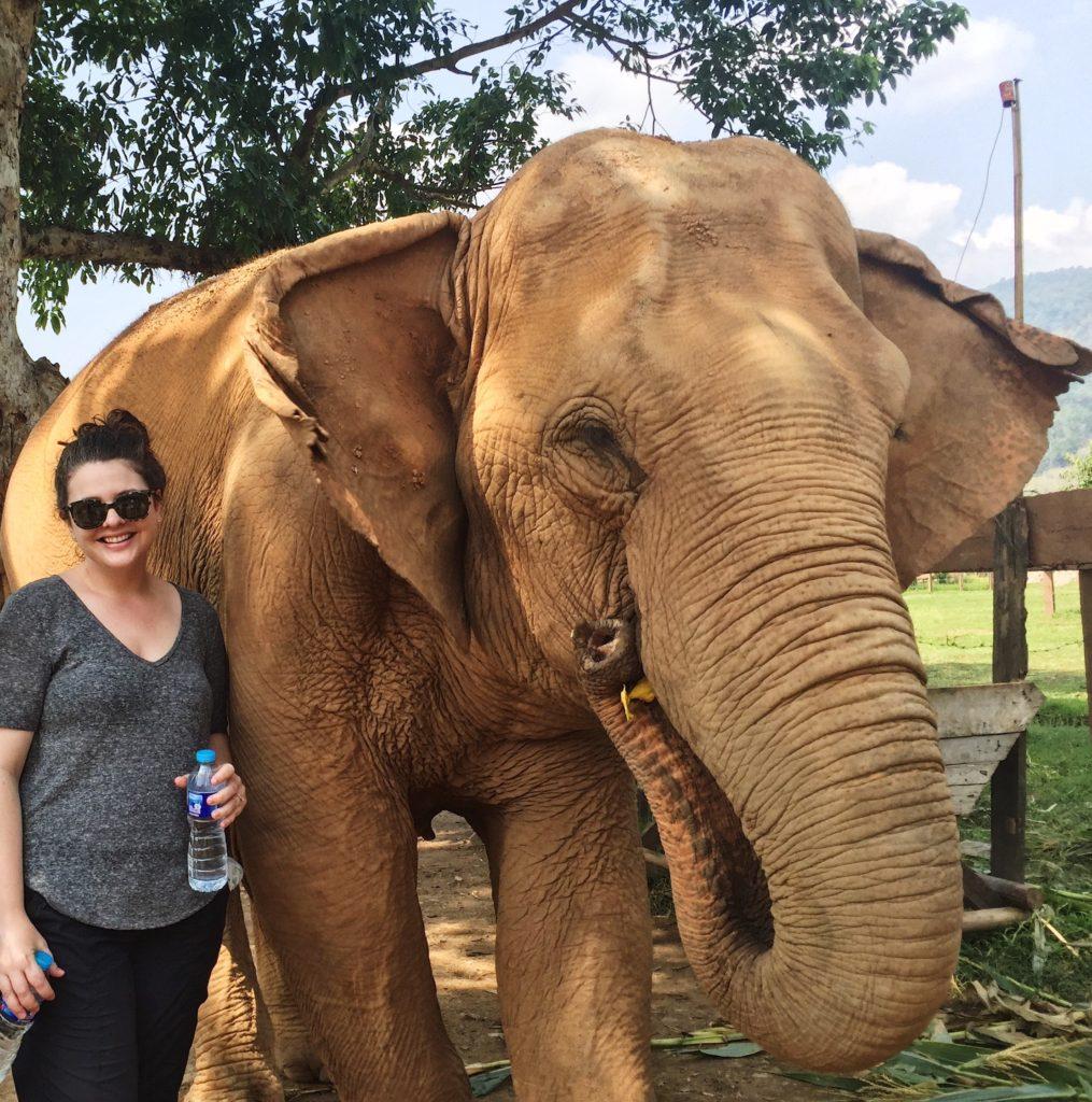 Elephant Nature Park Chiang Mai Thaliand